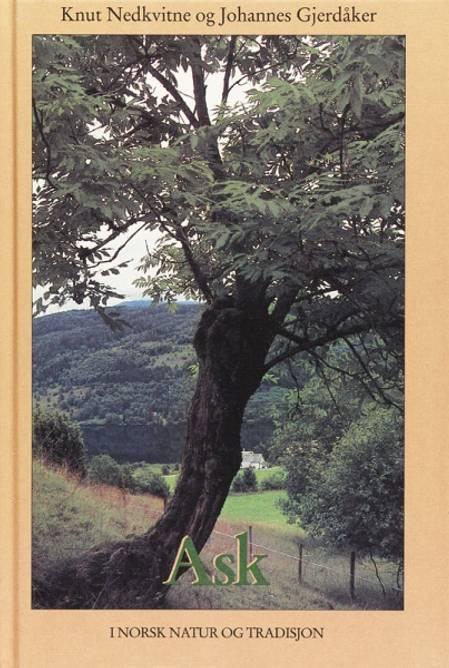 Bilde av Ask i norsk natur og